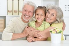 Portrait of grandparents with granddaughter posing at home stock images