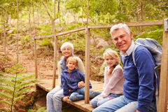 Grandparents with grandkids on bridge in a forest, portrait Stock Image