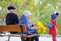 Grandparents and grandson enjoying beautiful autumn day Stock Photos