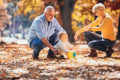 Grandparents and grandson together in park stock images