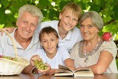 Grandparents with grandsons Royalty Free Stock Image