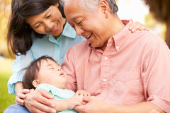 Grandparents Holding Sleeping Grandson In Park Stock Photography