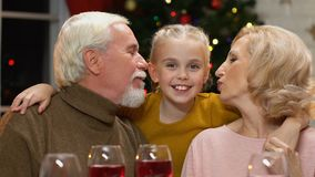 Grandparents kissing cute granddaughter, old couple happy to see child at Xmas. Stock footage stock video