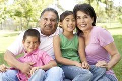 Grandparents no parque com netos fotografia de stock