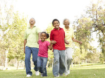 Grandparents no parque com netos imagem de stock royalty free
