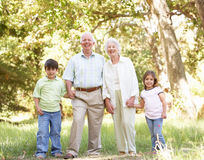 Grandparents In Park With Grandchildren. Smiling At Camera royalty free stock photo