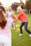 Grandparents Playing Baseball With Grandchildren In Park royalty free stock photo
