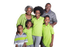 Grandparents and their 4 grandchildren. Isolated on white Royalty Free Stock Photography