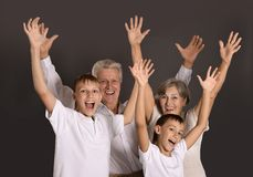 Grandparents and their two grandchildren Royalty Free Stock Image