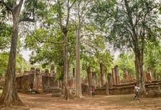 Grands arbres dans le site de patrimoine mondial de la Thaïlande Photographie stock