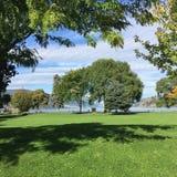 Grands arbres et ombres sur l'herbe verte luxuriante avec le fond de lac Photographie stock
