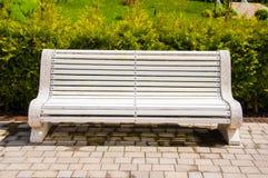 Grands bancs concrets avec les éléments en bois Près de l'allée en parc Été dans la cour Arbre dans le domaine image stock