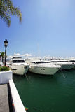 Grands, beaux, renversants et luxueux yachts blancs Images libres de droits