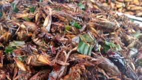 Grands crickets sur le vendeur d'insecte Deep fried à Bangkok photo stock