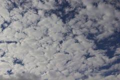 Grands cumulus blancs dans le ciel bleu images libres de droits