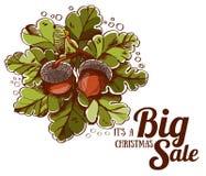 Grands feuilles et glands de chêne de vente de Noël Images libres de droits