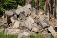 Grands logarithmes naturels de bois de chauffage Images libres de droits
