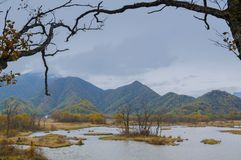 Grands neuf lacs de forêt de Hubei Shennongjia Photo stock