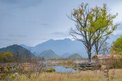 Grands neuf lacs de forêt de Hubei Shennongjia Photographie stock