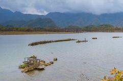 Grands neuf lacs de forêt de Hubei Shennongjia Images stock