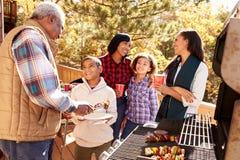 Grands-parents avec des enfants appréciant le barbecue extérieur photo libre de droits