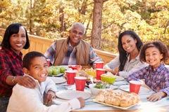 Grands-parents avec des enfants appréciant le repas extérieur image libre de droits
