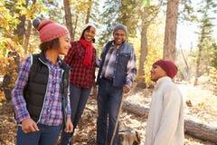 Grands-parents avec des enfants marchant par la région boisée d'automne image libre de droits