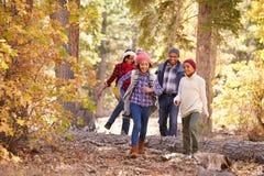 Grands-parents avec des enfants marchant par la région boisée d'automne photo libre de droits