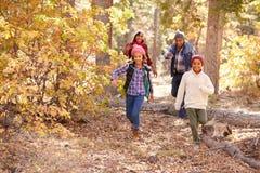 Grands-parents avec des enfants marchant par la région boisée d'automne photos libres de droits