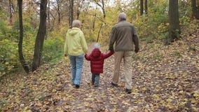 Grands-parents avec l'petit-enfant en parc d'automne banque de vidéos