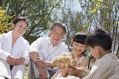 Grands-parents avec leurs petits-enfants et leur lapin d'animal familier se reposant en parc dans le printemps Photographie stock