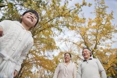 Grands-parents et petite-fille en parc Photos stock