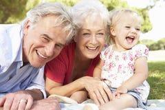 Grands-parents et petite-fille en parc ensemble Image stock