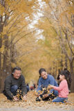Grands-parents et petite-fille jouant en parc avec des feuilles Images stock