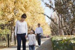 Grands-parents et petite-fille marchant en parc en automne, tenant des mains Photos libres de droits