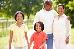 Grands-parents indiens et petits-enfants marchant dans la campagne Images stock