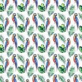 Grands perroquets jaunes de belle jungle mignonne colorée lumineuse et bleus tropicaux Photos libres de droits