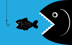 Grands poissons avec l'amorce Image libre de droits