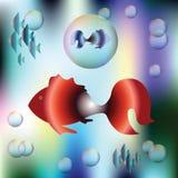 Grands poissons rouges décoratifs et petits poissons bleus Images libres de droits
