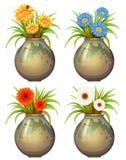 Grands pots avec des fleurs Images libres de droits