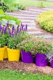 Grands pots d'usine avec des fleurs dans le jardin Photographie stock