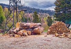 Grands rondins et pile en bois de bois de chauffage avec le fond de forêt de montagne Photos stock
