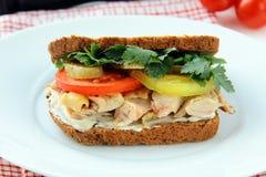 Grands sandwichs sains effectués avec du pain entier de texture Photo libre de droits