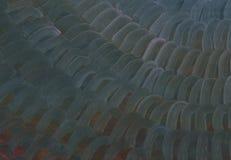 Grands traçages de texture de peinture à l'huile Nuit magique illustration stock
