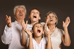 Grandsons with grandparents Stock Photography