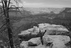 Grandview Point, Grand Canyon. Image captured from Grandview Point in Grand Canyon National Park Stock Image