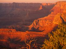 Grandview sunset 3. Sunset on the Grand Canyon at Grandview Point, S Rim Stock Photography