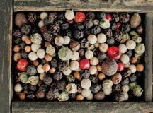 Granelli di pepe misti assortiti Fotografia Stock Libera da Diritti
