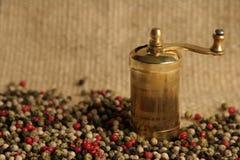 Granelli di pepe multicolori Fotografia Stock