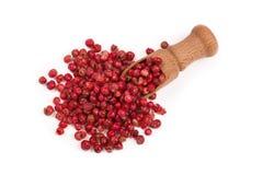 Granelli di pepe rossi isolati su fondo bianco Fotografia Stock Libera da Diritti